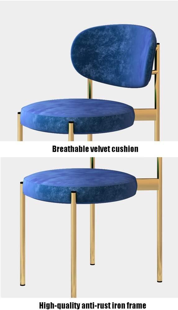 Chaise de salle, Loisirs Chaise Accueil Coin cuisine Chaise Flanelle Dressing Chaise avec coussin de dossier (Color : Blue) Gray