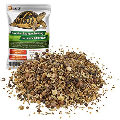 100g Schildkröten Samenmischung für Futterpflanzen inkl. Aussaat Anleitung I Saatgut für Landschildkröten I Futter für Ihre Schildkröte I Pflanzen als Schildkrötenfutter