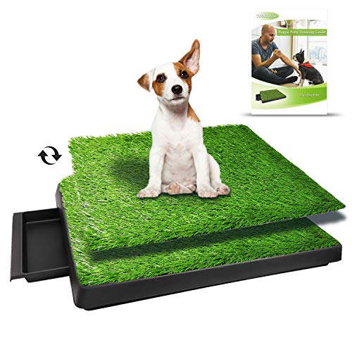 best indoor potty pads for dogs
