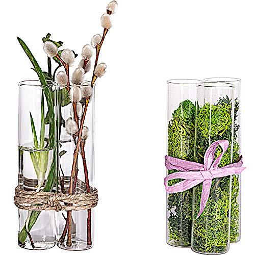 Tuuters.de Vaseneinsatz 6 Stück ✿ Reagenzglas Vase ✿ Ideal für Stecklinge ✿ (100 x Ø30mm)