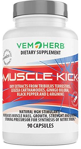 Vemoherb Muscle Kick - Beta Ecdysteron + Tribulus terrestris + L Arginin - Testosteron Booster - Sportnahrung für Muskelaufbau & Bodybuilding - Anabolika hochdosiert - 90 Kapseln