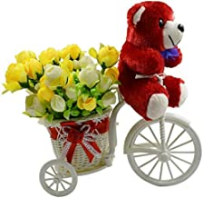 Sky Trends Artificial Teddy Cycle Flower Basketey Set and Gift Box for Girlfriend, Boyfriend, Husband, Wife, Couples on Valentine Day, Birthday, anniversary-001