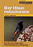 Der Hausrotschwanz: Vom Fels zum Wolkenkratzer - Evolutionsbiologie eines Gebirgsvogels (Sammlung Vogelkunde im AULA-Verlag) - Armin Landmann