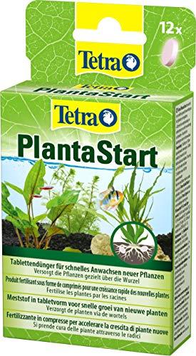 Tetra PlantaStart compresse di fertilizzante (per piante acquatiche in acquario, favorisce la formazione delle radici, ottima per piantine o reimpianti), 12 compresse