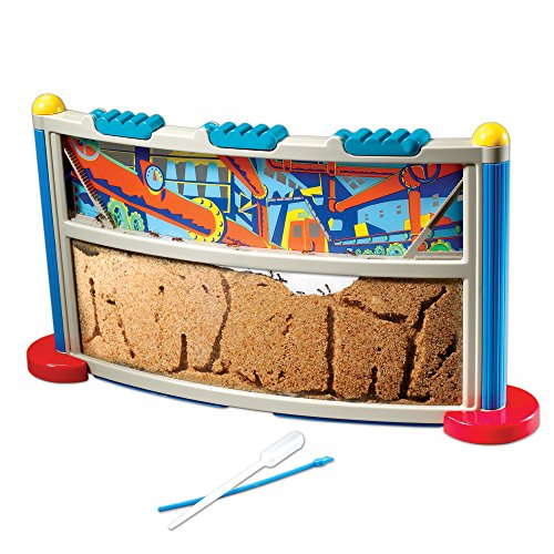 Product Image of the Educational Insights GeoSafari Ant Factory, Ant Habitat, Mail In Ants, STEM...