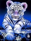 CDNY Animal tigre-5D Kit de Pintura de Diamante-para Manualidades,-decoración de la Pared del hogar40x40cm40x50cm