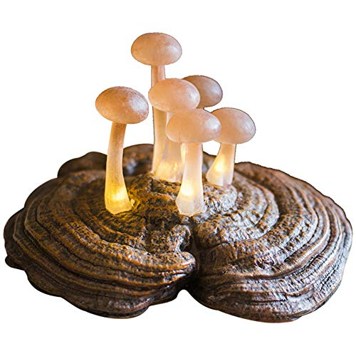 LBYLYH Cadeau d'ornement de décoration de Jardin Ornements de grappe de Champignons forestiers, Lampes de Table, veilleuses, tentures murales, Cadeaux Alice au Pays des Merveilles