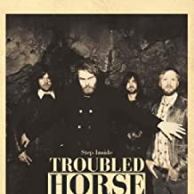 Best troubled horse step inside Reviews