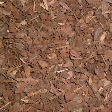 Terra Exotica Pinie 20 Liter mittel - Körnung 5-15 mm/Pinienrinde, Pinienborke - Inhalt 20 Liter