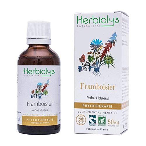 Extrait De Plantes Fraîches Bio | Phytothérapie | 50 ml | Herbiolys (Framboisier)