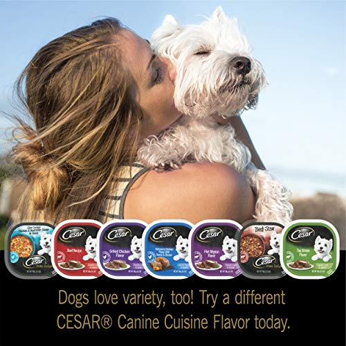 CESAR HOME DELIGHTS Soft Wet Dog Food Grilled Ribeye Steak Flavor with Vegetables in Sauce, (24) 3.5 oz. Easy Peel Trays