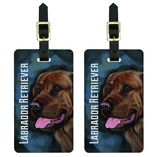 Graphics & More Chocolate Labrador Retriever Blue-Dog Pet Luggage Tags Suitcase Id, White