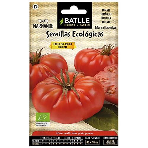 Semillas de Tomate: Amazon.es