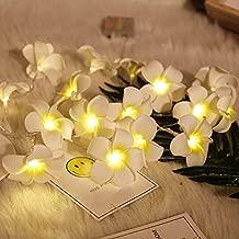 Satyam Kraft Battery Operated 10 Hawaii Flower String Fairy Light
