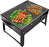 Radhe Fashion Folding & Portable Outdoor Barbeque Grill Toaster Charcoal BBQ Grill Oven