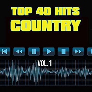 40 Country Hit Songs Vol. 1