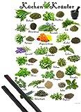 1art1 Kochkunst Poster (91x61 cm) Küchen-Kräuter