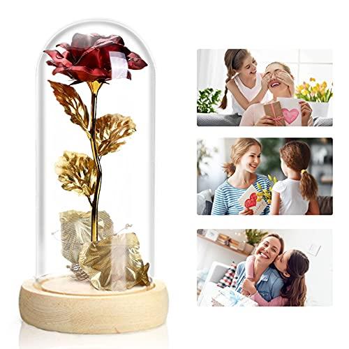 Die Schöne und Das Biest Rose Geschenk Kit,Rose im Glas,Ewige Rose Romantische Geschenke zum Muttertag,Geburtstag,Valentinstag,Erntedankfest,Weihnachtstag, Rosen Geschenk für Frauen Mama Freundin