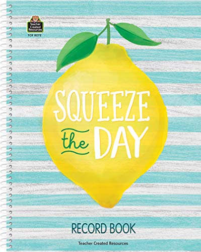 Teacher Created Resources ​Lemon Zest Record Book (TCR8272)