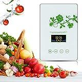 CAIYUE Ozone Generator 600 MG/h Générateur d'ozone Ozonateur utilisé pour Purifier Les légumes, Les Fruits, la Viande, l'eau et l'air
