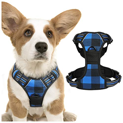 rabbitgoo Dog Harness No Pull, Adjustable Dog Walking Chest Harness with 2 Leash Clips, Comfort Padded Dog Vest Harness with Easy Handle, Reflective Front Body Harness for Small Breeds, Blue Plaid, S