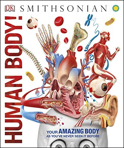 Human Body Knowledge Encyclopedias product image