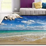 Naanle Ocean Area Rug 3'x5', Caribean Beach Sea Waves Polyester Area Rug Mat for Living Dining Dorm Room Bedroom Home Decorative