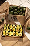 12 to 16 California Organic Hass Avocados from ACE Ranch, Fresh Avocados, 100% Certified Organic California Hass Avocados, Premium California Organic Avocados, Rich and Buttery Flavor, Fresh Avocado