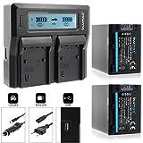2x Baterías Blumax NP-FV120 3300mAh + cargador doble para NP-FV120 | adaptado para diversos modelos de cámaras de Sony | cargar dos baterias a la vez