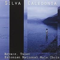 Silva Caledonia (2009-03-10)