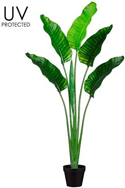 One 5 Foot Outdoor Artificial Bird Of Paradise Palm Tree Potted UV Rated Plant By Silk Tree Warehouse Company Inc