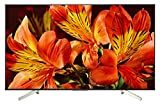 Sony KD-85XF8596 - Televisor 85' 4K HDR LED con Android TV (Motionflow XR 1000 Hz, 4K HDR Processor X1, pantalla TRILUMINOS, Wi-Fi), negro