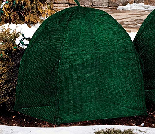 Check Out This Nuvue 20252 Shrub Cover 28X28X34