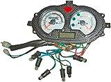 Xfight-Parts Tacómetro completo 0-140 km/h 4 tiempos 125 ccm YY125T-28 REX RS 1000