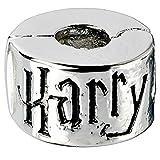 Warner Bros. Colgante Charm Collection Stopper Harry Potter