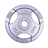 inSPORTline Olympic Steel Plate Dumbbell Weight Plate Home Gym Equipment | Perfect for Fitness Bodybuilding Weight Lifting