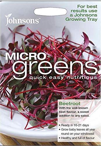 Portal Cool Johnsons - Salade - MicroGreen Betterave (Bulls Sang) - 800 graines