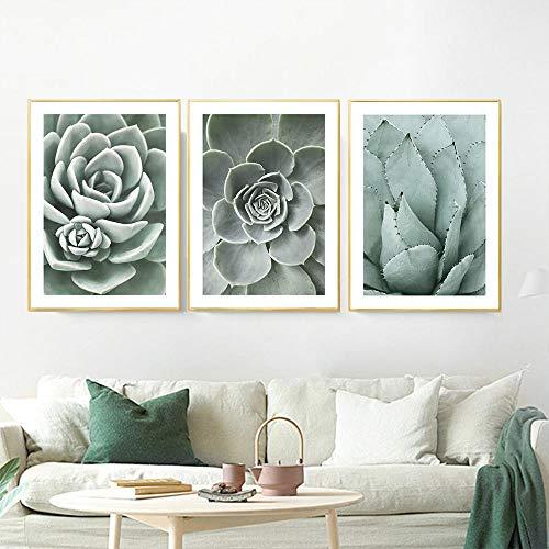 Póster de planta verde, lienzo suculento, impresión artística de pared, imágenes modernas nórdicas, decoración del hogar, 51x71cmx3 sin marco