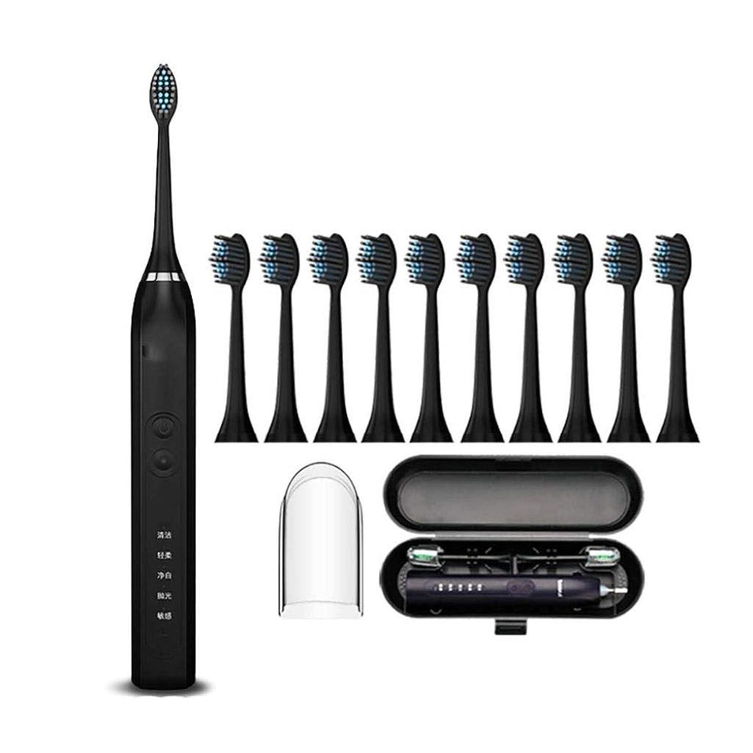 キャンバスアグネスグレイ結核電動歯ブラシ、きれいな歯、ホワイトニング、マルチモードオプション、4時間充電、最短25日間の使用、10代および成人モデルに最適、5または10個の交換用ヘッド、滑り止めハンドル (Color : Black, Size : 10 brush heads)