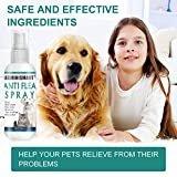 IMG-2 segminismart spray pulci antipulci cane