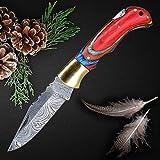 QueenClass Cuchillo Plegable Cuchillo de Bolsillo de Acero de Damasco Extra Afilado - Hecho a Mano Cuchillo Deportivo, de Exterior, de Supervivencia - Serie ROVFISK (Multicolor)