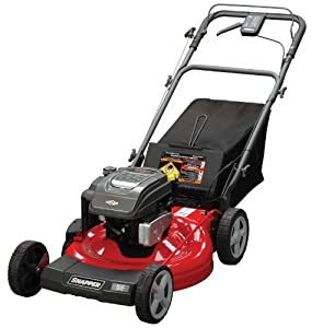 Cheap Price Snapper 7800837 190 Cc Gas Powered 22 In 3