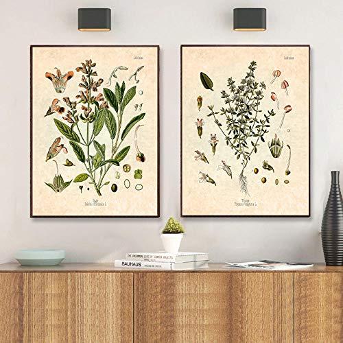 IGZAKER Kruiden Kruiden Print Vintage Botanische Poster Peterselie Salie Rozemarijn Tijm Culinaire Wall Art Foto Canvas Schilderij Keuken Decor-50x75cmx2pcs geen frame