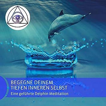 Begegne deinem tiefen inneren Selbst (Eine geführte Delphin Meditation)