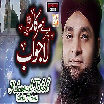 Mere Sarkar Hain Lajawab - Single