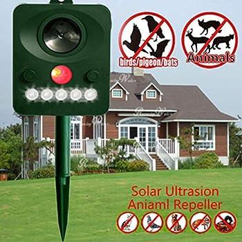 ZXCV Capteur Infrarouge d'énergie Solaire Animal Chats Chiens Et Vague Ultrasonique Fort De Repousseur D'extérieur (1Pcs),Green