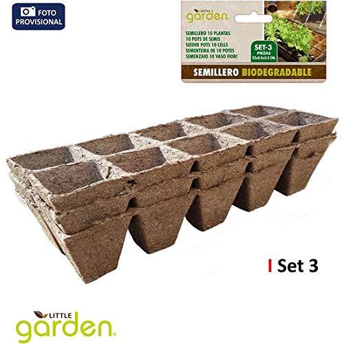 Little Garden 52391 Lot de 3 semis 10 plantes, 22 x 8,5 x 5,5 cm