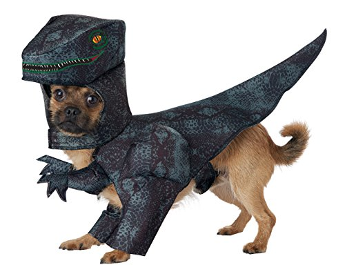 California Costumes Pet Pupasaurus Rex Dog Costume Costume