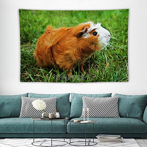 Tapestry Wall Hanging, Cute Guinea Pig Garden Pet Animal Tapestries Wall Decor for Dorm Living Room Bedroom 150x100 cm