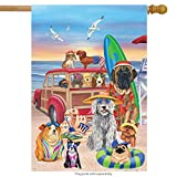 Briarwood Lane Dog Days of Summer House Flag Beach Surfboards Sandcastle 28' x 40'